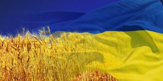 0000033807-ukraina-flag